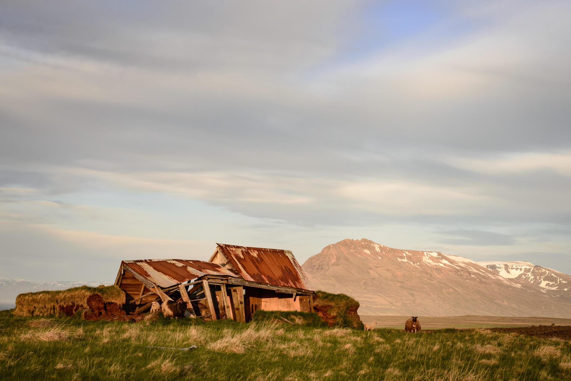 Island; Fotograf Steffen Lohse