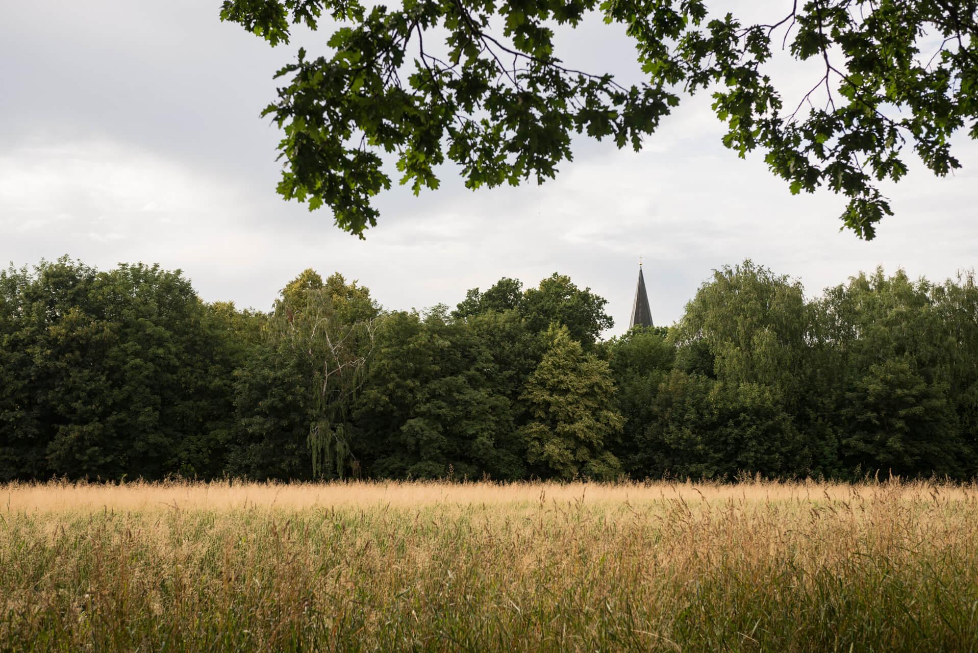 Dresden Eschdorf; Fotograf Steffen Lohse