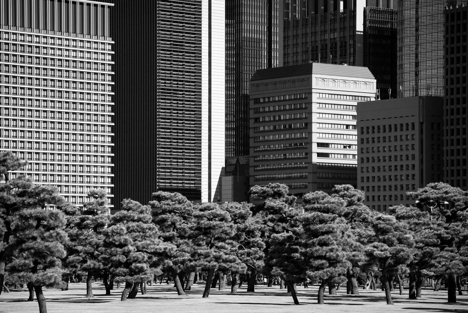 Tokyo, Japan, Fotografie monochrom, Steffen Lohse-Koch