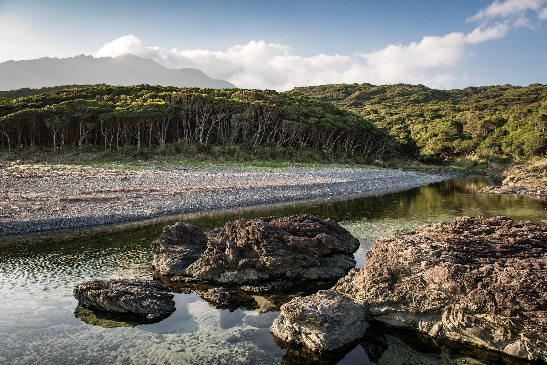 Japan: Yakushima Island: Lavaküste bei Anbo, Fotograf: Steffen Lohse